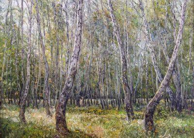 34 «Березовая роща» («Birch grove ») 45x60 sm