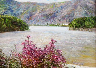 50 «Багульник. Река Катунь » (« Ledum. The river Katun») 35x45 sm